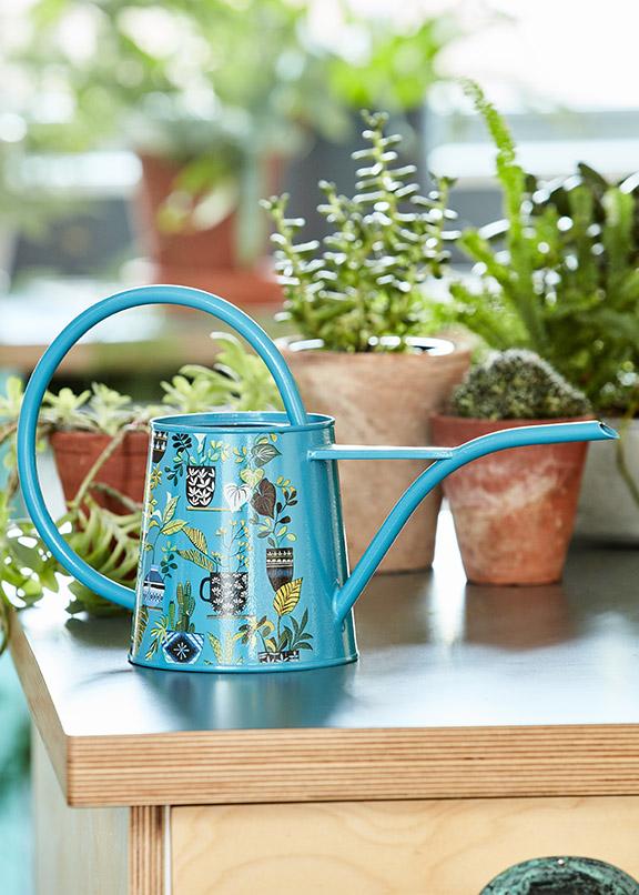 полив комнатных растений купить