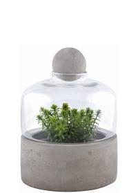 Террариум для растений на керамическом поддоне AGG43 Esschert Design фото
