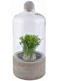 Террариум для растений на керамическом поддоне AGG44 Esschert Design фото
