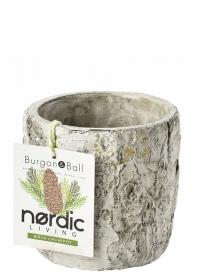 Кашпо для цветов из бетона Silver Birch Burgon & Ball фото.jpg