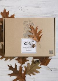 Подарочная крафт коробка большая Consta Garden фото