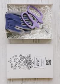 Подарок флористу Violet от Consta Garden фото
