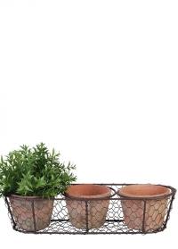 Набор терракотовых горшков из 3 шт. в металлической корзинке AT11 Esschert Design фото