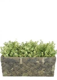 Керамическое прямоугольное кашпо для растений Aged Ceramic Esschert Design фото