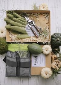 Подарок мужчине для дачи и сада Green от Consta Garden фото
