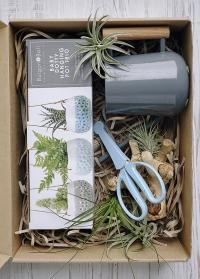 Подарок цветоводу «Уход за суккулентами» в интернет-магазине Consta Garden фото