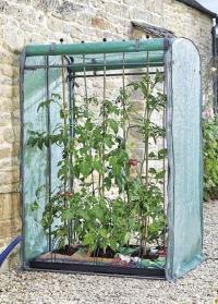 Складная мобильная теплица для выращивания томатов GroZone Max Smart Garden фото