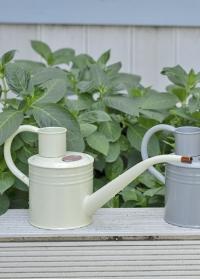 Лейка для комнатных цветов с длинным носиком 1 л. Ivory Smart Garden фото