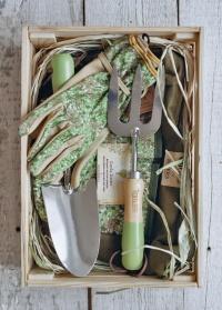 Подарок для садовода Honeysuckle by William Morris Briers