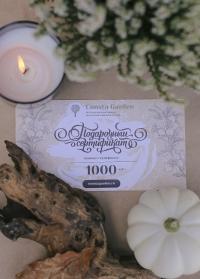 Подарочный сертификат 1000 руб Consta Garden фото