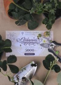 Подарочный сертификат 5000 руб Consta Garden фото