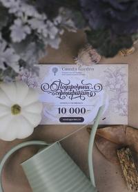 Подарочный сертификат 10000 руб Consta Garden фото