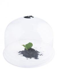 Клош-колпак для укрытия растений Esschert Design, L