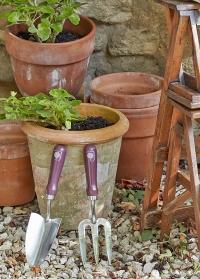 Набор садовых инструментов - совок и вилка для рыхления почвы Passiflora Collection Burgon & Ball фото