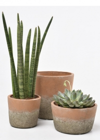 Кашпо из терракоты  Indoor Pots Collection Burgon & Ball
