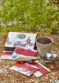 Набор семян цветов в подарочной упаковке «Полевые цветы» Burgon & Ball