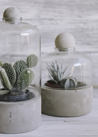 Стеклянный террариум для цветов на керамическом поддоне AGG43 Esschert Design фото
