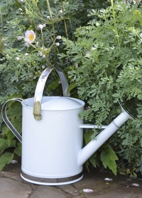 Лейка садовая Esschert Design