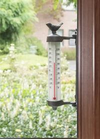 Термометр оконный уличный с керосином Птичка BR20 Esschert Design фото