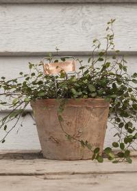 Таблички для маркировки растений медные Esschert Design