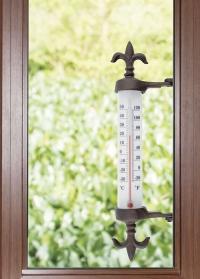 Термометр оконный уличный TH84 Esschert Design фото