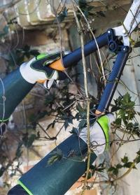 Перчатки с длинными манжетами для колючих кустарников и роз Buisson AJS-Blackfox фото