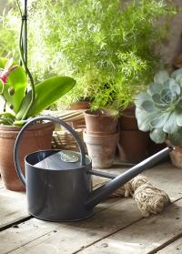 Лейка для комнатных растений 1.7 литра Sophie Conran фото 2.jpg