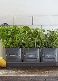 Набор эмалированных кашпо для выращивания трав Charcoal Garden Suppliers Burgon & Ball фото