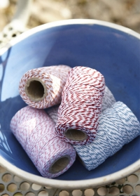 Набор цветных шнуров для растений Sophie Conran Burgon & Ball фото.jpg