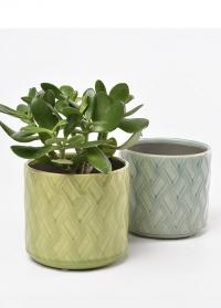 Керамическое кашпо Barcelona Indoor Pots Collection фото.jpg