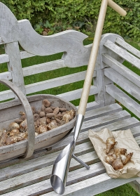 Сажалка для луковиц с длинной ручкой Burgon & Ball фото.jpg