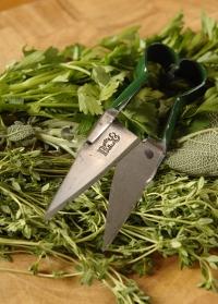 Мини-ножницы для срезки зелени Burgon & Ball картинка.jpg
