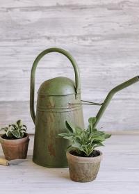 Лейка садовая в винтажном стиле TG239 Esschert Design фото.jpg