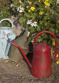 Лейка старинная для цветов TG239 Esschert Design фото.jpg