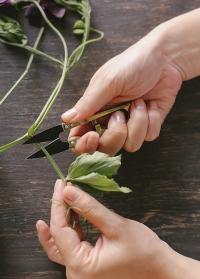Мини-ножницы флористические Burgon & Ball фото.jpg