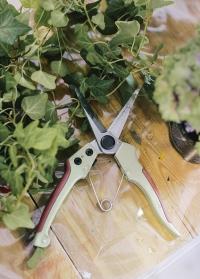 Ножницы цветочные для флориста GardenGirl Chelsea TSS30 фото.jpg