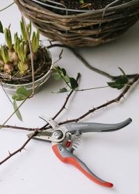 Японский секатор для роз и цветов Cut & Hold Chikamasa фото.jpg