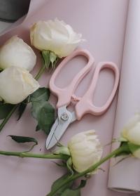 Ножницы японские флористические профессиональные MF-9000P Chikamasa фото
