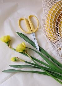 Ножницы флористические японские для цветов Florist CRI-360SFY Chikamasa фото.jpg
