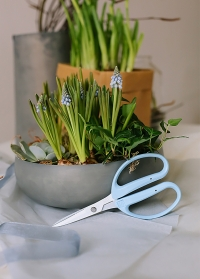 Ножницы флористические для цветов Florist CRI-360SFB Chikamasa фото.jpg