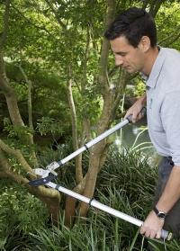 Сучкорез для деревьев с храплвым механизмом Burgon Ball английский инструмент фото.jpg
