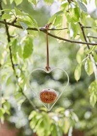 Кормушка подвесная для яблока в форме сердца Sophie Conran фото.jpg