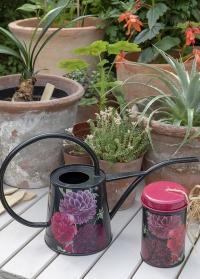 Дизайнерская лейка для комнатных растений 1 л British Bloom Burgon Ball фото.jpg