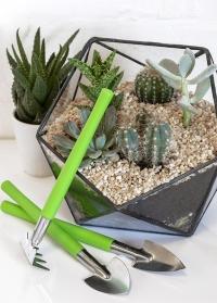 Инструменты для террариума для комнатных растений Burgon & Ball фото.jpg