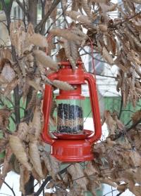 Красивая кормушка для птиц свечной фонарь FB419 Best for Birds Esschert Design фото.jpg