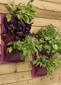 Карман для выращивания растений Burgon & Ball фото.jpg