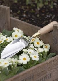 Совок садовый для посадки и пересадки растений Sophie Conran Burgon & Ball фото.jpg