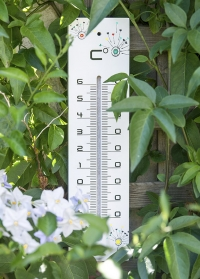 Термометр деревянный для дома и улицы T4040000 AJS Blackfox фото.jpg