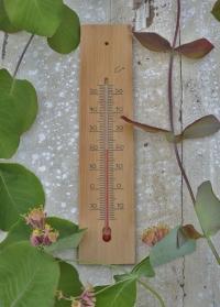 Деревянный настенный термометр для помещения 40013 Blackfox фото.jpg