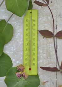Термометр деревянный для дома и улицы Anis Blackfox фото.jpg